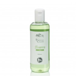 Gentle detangling shampoo -...