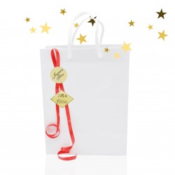 Special gift bag - Merry Christmas